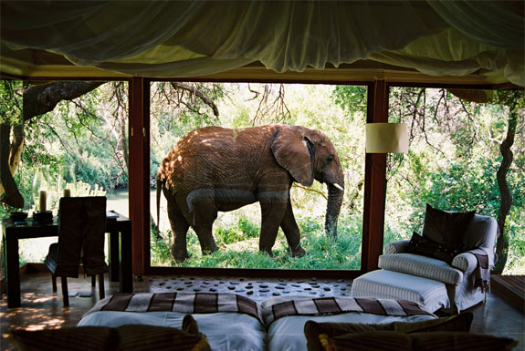 luxury-south-africa-lodge-m